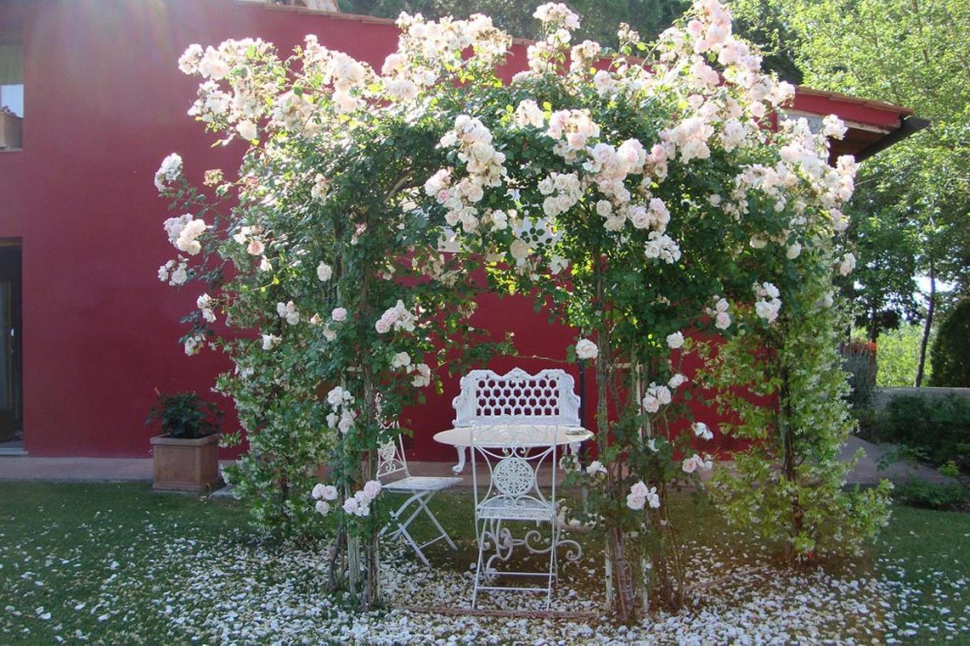 Agriturismo Tuscany Luxury agriturismo near the sea in Tuscany