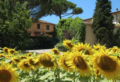 Agriturismo for families with large pool and paddling pool