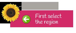 Select a region